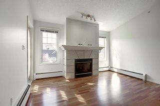 Photo 13: 503 2419 ERLTON Road SW in Calgary: Erlton Apartment for sale : MLS®# A1028425