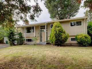 Photo 1: 4034 Hodgson Pl in VICTORIA: SE Lake Hill House for sale (Saanich East)  : MLS®# 806727