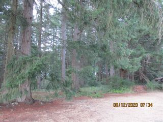 Photo 1: LT20 Torrence Rd in : CV Comox (Town of) Land for sale (Comox Valley)  : MLS®# 851801