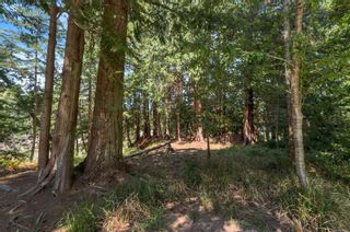 Photo 48: 1467 Milstead Rd in : Isl Cortes Island House for sale (Islands)  : MLS®# 881937