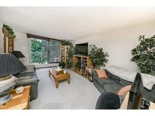 """Photo 5: 504 320 ROYAL Avenue in New Westminster: Downtown NW Condo for sale in """"PEPPERTREE"""" : MLS®# R2469263"""