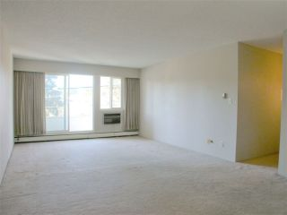 """Photo 3: 210 12096 222 Street in Maple Ridge: West Central Condo for sale in """"CANUCK PLAZA"""" : MLS®# R2531266"""