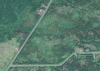 Photo 3: Lot Highway 320 in Pondville: 305-Richmond County / St. Peters & Area Vacant Land for sale (Highland Region)  : MLS®# 202114159