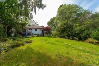 Photo 17: 4261 Carey Rd in VICTORIA: SW Northridge House for sale (Saanich West)  : MLS®# 790811