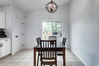 Photo 20: 9932 178 Avenue in Edmonton: Zone 27 House for sale : MLS®# E4249789