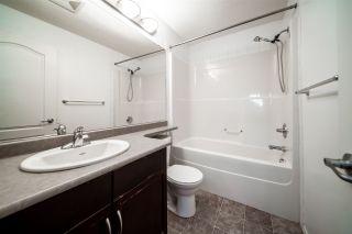 Photo 14: 306 5951 165 Avenue in Edmonton: Zone 03 Condo for sale : MLS®# E4225838
