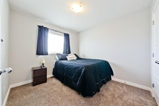 Photo 18: 206 Ravensmoor Link SE: Airdrie Detached for sale : MLS®# A1058876