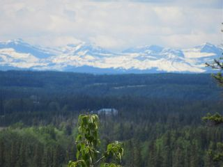 Photo 2: 342042  Range Road 44: Rural Clearwater County Detached for sale : MLS®# C4295944