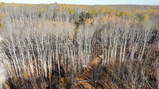 Photo 6: 15 54023 RGE RD 280: Rural Parkland County Rural Land/Vacant Lot for sale : MLS®# E4266505