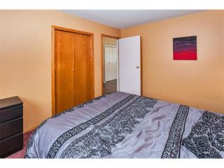 Photo 16: 317 CITADEL HILLS Circle NW in Calgary: Citadel House for sale : MLS®# C4112677