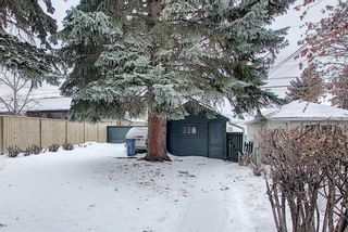 Photo 38: 218 19 Avenue NW in Calgary: Tuxedo Park Detached for sale : MLS®# A1073840