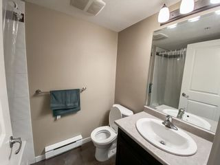 Photo 15: 210 2038 SANDALWOOD CRESCENT in Abbotsford: Central Abbotsford Condo for sale : MLS®# R2573800