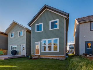 Photo 40: 321 MARQUIS Heights SE in Calgary: Mahogany House for sale : MLS®# C4074094