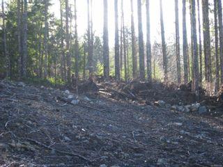 Photo 12: 1230 Cottonwood Rd in : NI Kelsey Bay/Sayward Land for sale (North Island)  : MLS®# 865463