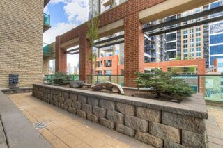 Photo 28: 205 1410 1 Street SE in Calgary: Beltline Apartment for sale : MLS®# A1109879