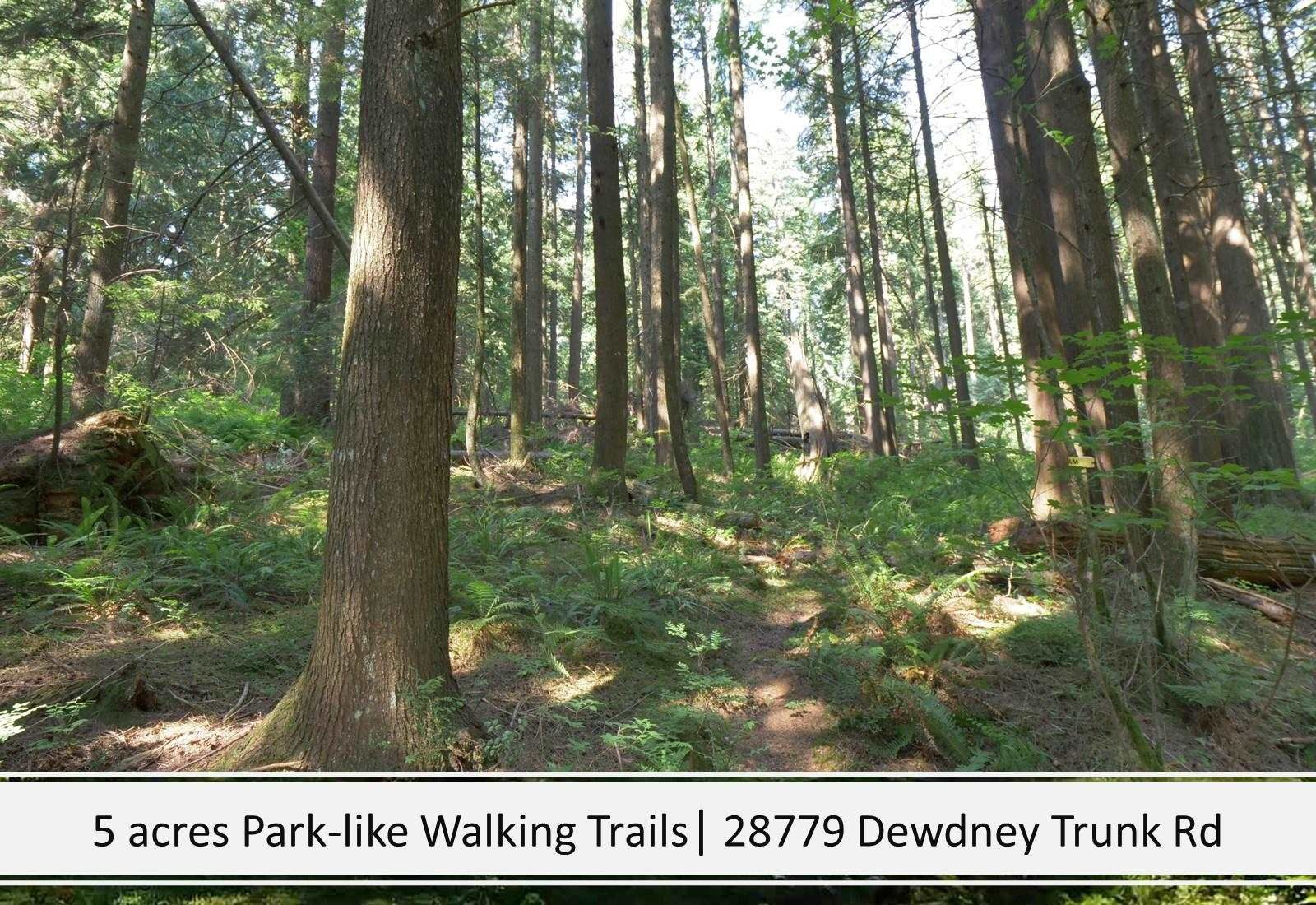 Photo 10: Photos: 28779 DEWDNEY TRUNK Road in Maple Ridge: Northeast House for sale : MLS®# R2597212