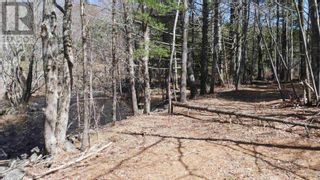 Photo 10: Lot Labelle Road in Labelle: Vacant Land for sale : MLS®# 202108302