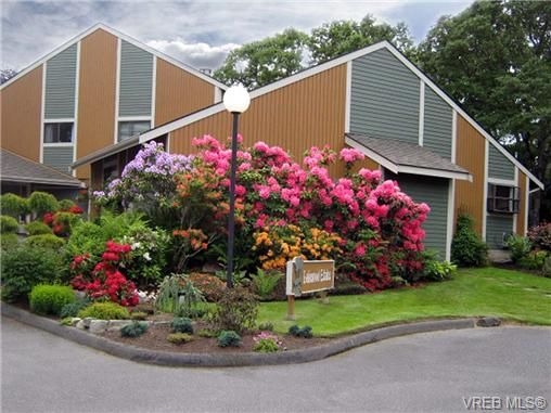 Main Photo: 12 4041 Saanich Rd in VICTORIA: SE High Quadra Row/Townhouse for sale (Saanich East)  : MLS®# 645762