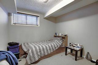 Photo 14: 193 Saddlebrook Way NE in Calgary: Saddle Ridge Detached for sale : MLS®# A1070319