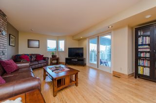 Photo 32: 41056 BELROSE Road in Abbotsford: Sumas Prairie House for sale : MLS®# R2039455