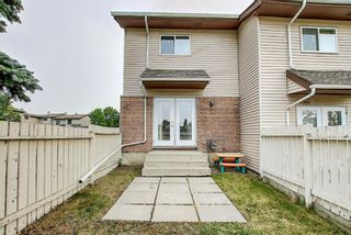 Photo 18: 19 64 Whitnel Court NE in Calgary: Whitehorn Row/Townhouse for sale : MLS®# A1136758