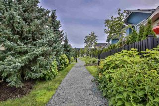 """Photo 35: 41 22057 49 Avenue in Langley: Murrayville Townhouse for sale in """"HERITAGE"""" : MLS®# R2493001"""