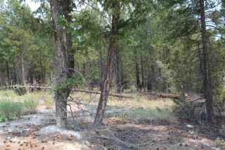 Photo 5: Lot 15 COPPER POINT WAY in Windermere: Vacant Land for sale : MLS®# 2460140
