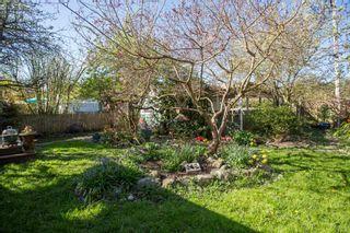 "Photo 28: 2847 GORDON Avenue in Surrey: Crescent Bch Ocean Pk. House for sale in ""CRESENT BEACH VILLAGE"" (South Surrey White Rock)  : MLS®# R2566027"