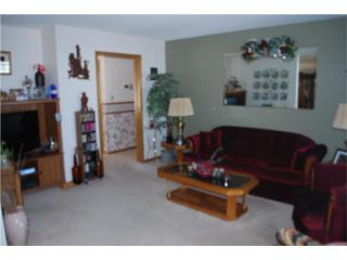 Photo 5: 443 Sarah Avenue in SOMERSET: Manitoba Other Residential for sale : MLS®# 1004270