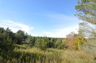 Photo 18: 221 Old Percy Road in Cramahe: Castleton Property for sale : MLS®# X5398941