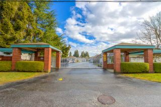 """Photo 29: 137 10172 141 Street in Surrey: Whalley Townhouse for sale in """"Camberley Green"""" (North Surrey)  : MLS®# R2543394"""