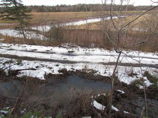 Photo 9: 2127 Highway 236 in Mosherville: 403-Hants County Vacant Land for sale (Annapolis Valley)  : MLS®# 202100967