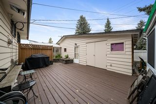 Photo 7: 3304 Barr Road NW in Calgary: Brentwood Detached for sale : MLS®# A1146475