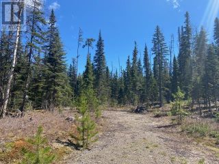 Photo 37: LOT 8 BOWRON LAKE ROAD in Quesnel: House for sale : MLS®# R2583629