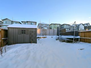 Photo 41: : Airdrie Detached for sale : MLS®# A1070215