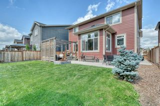 Photo 39: 162 Aspenmere Drive: Chestermere Detached for sale : MLS®# A1014291