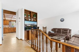 Photo 6: 4 Castlebury Way NE in Calgary: Castleridge Detached for sale : MLS®# A1146595