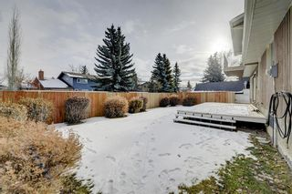 Photo 44: 135 Lake Tahoe Green SE in Calgary: Lake Bonavista Detached for sale : MLS®# A1051041
