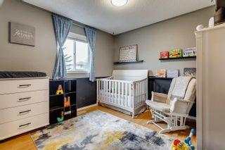 Photo 21: 9932 178 Avenue in Edmonton: Zone 27 House for sale : MLS®# E4249789