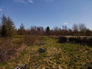 Photo 5: 11984 HIGHWAY 217 in Sea Brook: 401-Digby County Vacant Land for sale (Annapolis Valley)  : MLS®# 202111923