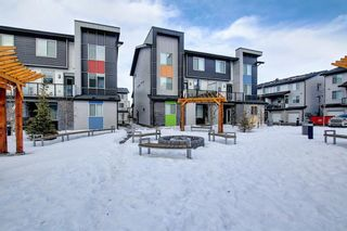 Photo 39: 201 135 Redstone Walk NE in Calgary: Redstone Apartment for sale : MLS®# A1060220