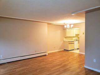 """Photo 10: 105 8770 LAUREL Street in Vancouver: Marpole Condo for sale in """"VILLA MARINE"""" (Vancouver West)  : MLS®# R2458969"""