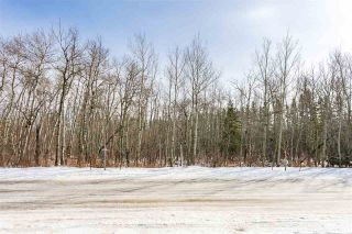 Photo 7: 4519 DONSDALE Drive in Edmonton: Zone 20 Vacant Lot for sale : MLS®# E4227514