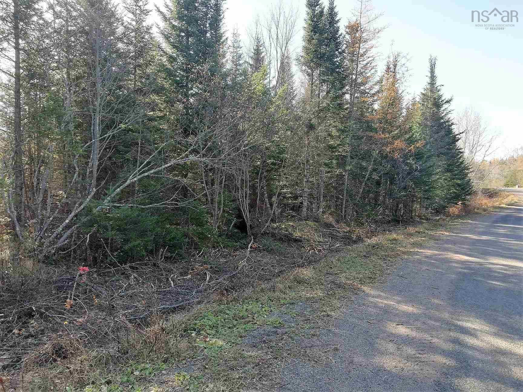 Main Photo: Lot 1 Hirem Lynds Road in Central North River: 104-Truro/Bible Hill/Brookfield Vacant Land for sale (Northern Region)  : MLS®# 202122060
