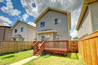 Photo 49: 68 TARALAKE Street NE in Calgary: Taradale Detached for sale : MLS®# C4256215