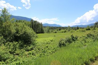 Photo 2: 37 2481 Squilax Anglemont Road in Lee Creek: North Shuswap Land Only for sale (Shuswap)  : MLS®# 10094382