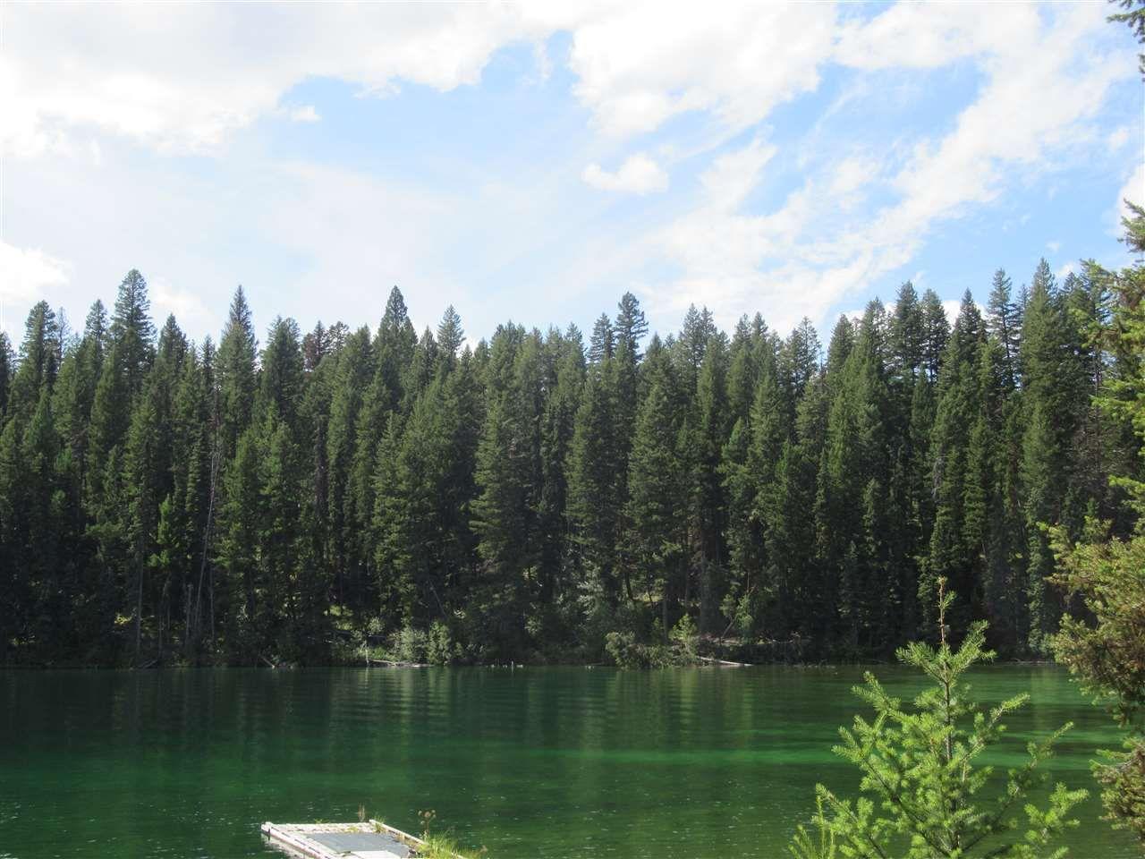 Photo 6: Photos: 2454 TYEE LAKE Road in Williams Lake: Williams Lake - Rural North House for sale (Williams Lake (Zone 27))  : MLS®# R2398466