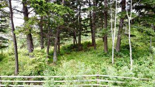 Photo 15: 437 WOODLAND Drive in Williams Lake: Williams Lake - City Land for sale (Williams Lake (Zone 27))  : MLS®# R2475217