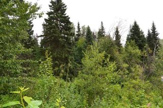 """Photo 2: LOT 10 GRANTHAM Road in Smithers: Smithers - Rural Land for sale in """"Grantham"""" (Smithers And Area (Zone 54))  : MLS®# R2604034"""
