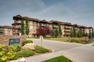 Photo 23: 1302 92 Crystal Shores Road: Okotoks Apartment for sale : MLS®# A1132113